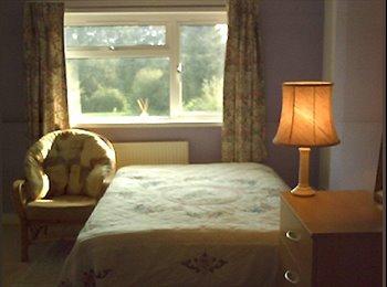 EasyRoommate UK - Large affordable double room to let - Westfield, Hastings - £265