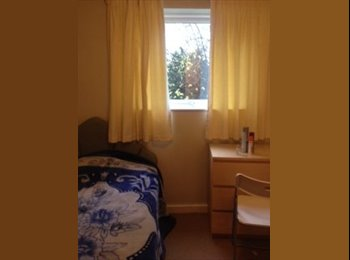 single room in five ways