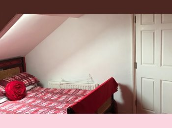 EasyRoommate UK - room to rent - South Shields, South Tyneside - £300