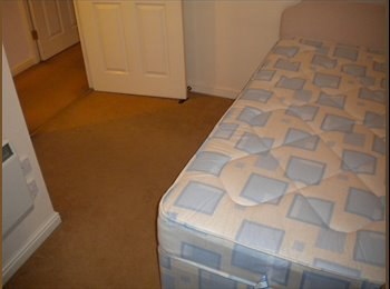 single bedroom in shared property