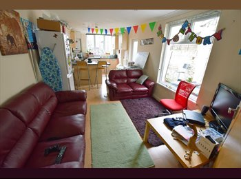EasyRoommate UK -  8 bed house with no fees to pay in Roath - Roath, Cardiff - £290
