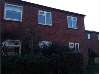EasyRoommate UK - Single room Available - Wellingborough, Wellingborough - £250