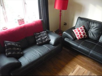 EasyRoommate UK - Home from Home (comfy house to feel at home in) - Ashton-Under-Lyne, Tameside - £300
