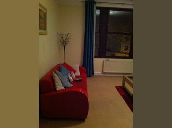 Fully furnished double room available December 1st