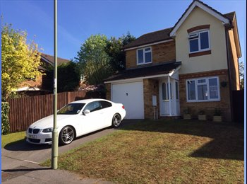 EasyRoommate UK - ROOM TO RENT IN MODERN 3 BEDROOM DETACHED HOUSE. - Hatch, Basingstoke and Deane - £485