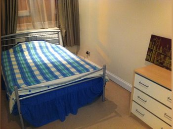 ROOM TO LET WITHIN PROFESSIONAL FLAT SHARE WATFORD