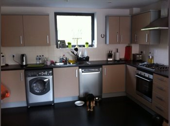 EasyRoommate UK - Walking distance to Centre and Maidstone West - Maidstone, Maidstone - £450