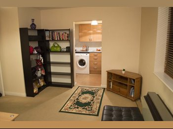 Bright Single Room in Spacious 2 Bed Flat Zone 2