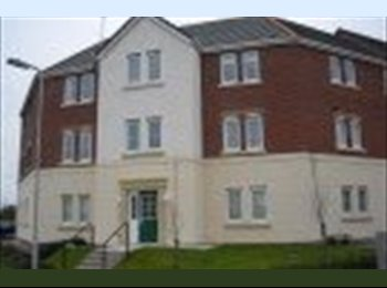 EasyRoommate UK - Rooms available in professional flat share. - Bridgend, Bridgend - £400