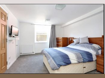 Spacious Double Bedroom with own Bathroom