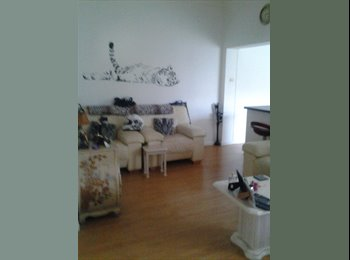 EasyRoommate UK - Lovely flat to tent - South Shields, South Tyneside - £320