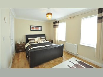 Double bedroom available for professional single