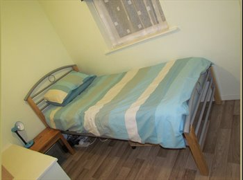 EasyRoommate UK - single room available near station - New Milton, New Forest - £300