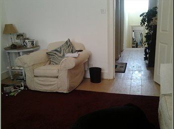EasyRoommate UK - Torquay town spacious appartment nicely decorated. - Torquay, Torquay - £433