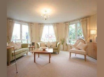 EasyRoommate UK - 2 bed room flat - free rent till 11 Dec - Chester, Chester - £400