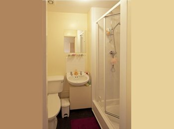 **Ensuite room available for UoB student**