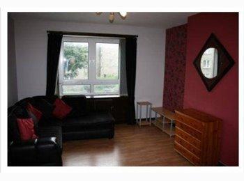EasyRoommate UK - Double bedroom available 1 minute from AberdeenUni - Old Aberdeen, Aberdeen - £450