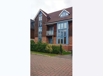EasyRoommate UK - Large rooms, Large house in Broughton - Milton Keynes, Milton Keynes - £540