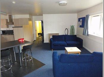 Birmingham student accomodation available now