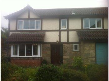 EasyRoommate UK - Detached four bedroom with double garage - Castle Donington, Derby - £300