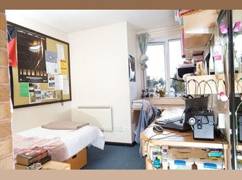 EasyRoommate UK - Accommodation for take over - Exeter, Exeter - £594