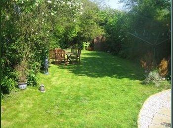 EasyRoommate UK - two single rooms, comfortable, convenient location - Cambridge, Cambridge - £400