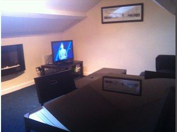 EasyRoommate UK - Double bedroom for student - Scotforth, Lancaster - £348