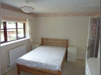 EasyRoommate UK - FANTASTIC STUDENT HOUSE RIGHT OPPOSITE UNIVERSITY - Worcester, Worcester - £433