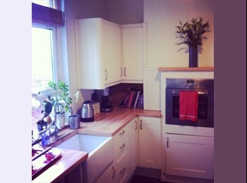 EasyRoommate UK - Room to rent in Splott - Penylan, Cardiff - £400