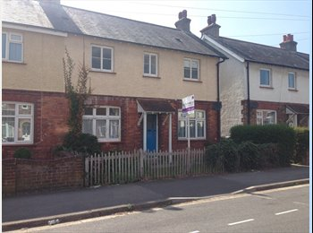 EasyRoommate UK - Double room to rent in Chichester houseshare - Chichester, Chichester - £410