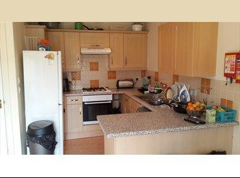 EasyRoommate UK - Single Room in friendly house share - Cheltenham, Cheltenham - £275
