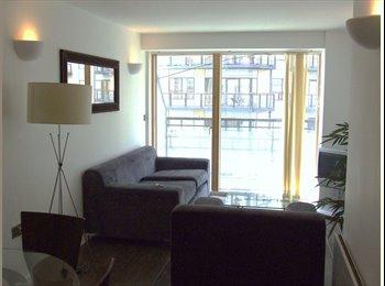 EasyRoommate UK - Double Room with En Suite in 2 Bed Flat - Leeds Centre, Leeds - £400