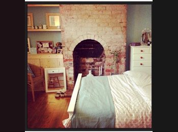 EasyRoommate UK - Double room in a beautiful Victorian terrace - Worcester, Worcester - £500