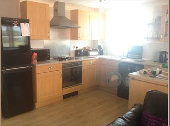 EasyRoommate UK - Double room, furnished - Cathays, Cardiff - £325