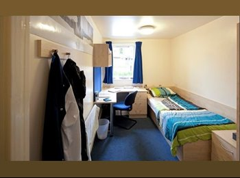 Student University Accommodation (Rent Negotiable)