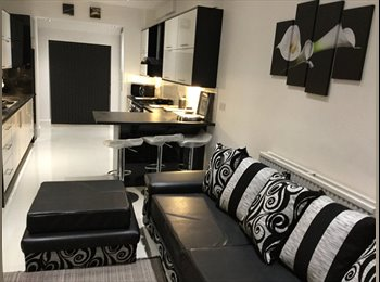 EasyRoommate UK - COMING SOON - STUNNING Newly Renovated Property - Kingston-upon-Hull, Hull - £550