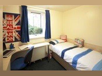 EasyRoommate UK - Birmingham Uni Student Let - Edgbaston, Birmingham - £435