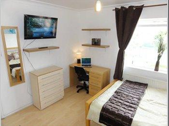 EasyRoommate UK - Clean and Luxury living right in the city centre - Edinburgh Centre, Edinburgh - £400