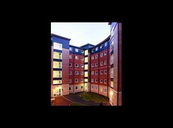 EasyRoommate UK - Ensuite Room Available - Birmingham - Birmingham, Birmingham - £404