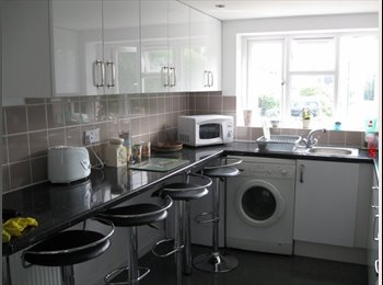 EasyRoommate UK - Bedroom available Jan 1st Canterbury student home - Canterbury, Canterbury - £424