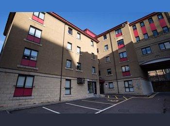 EasyRoommate UK - Student Room to Let - Edinburgh Centre, Edinburgh - £605