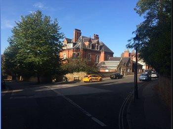 EasyRoommate UK - Penthouse Flat in the Park Estate - Nottingham, Nottingham - £400