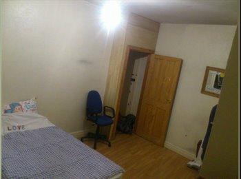 EasyRoommate UK - Nice room in flat for rent - Hyde Park, Leeds - £329