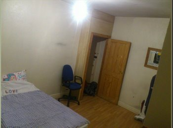 Nice room in flat for rent