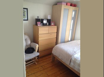 EasyRoommate UK - Lovely sunny double SHORT TERM LET - Roath, Cardiff - £450