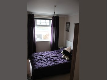 EasyRoommate UK - Two rooms to rent - Truro, Truro - £550