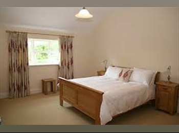 double or single room to rent , sharing house