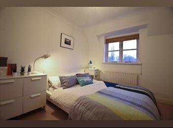 Large Double Room with En Suite Bathroom
