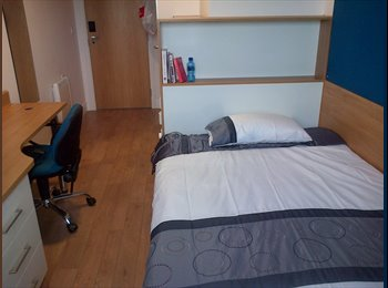EasyRoommate UK - En-suite room at Abacus House - Brighton, Brighton and Hove - £572