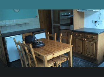 EasyRoommate UK - Room in Sheffield - Crookes, Sheffield - £260